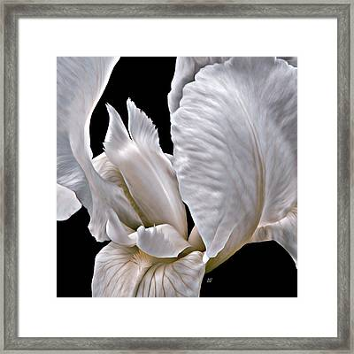 Tiger Striped Iris Heart Framed Print by Barbara St Jean