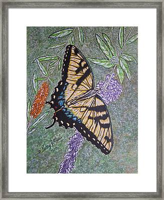 Tiger Swallowtail Butterfly Framed Print by Kathy Marrs Chandler