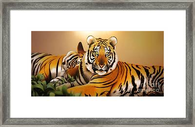 Tiger Tales Framed Print by Shannon Rogers