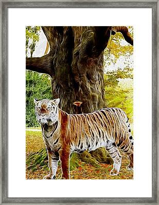 Tiger Under Decidous Bark Tree  Framed Print