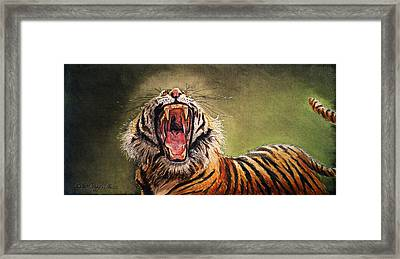Tiger Yawn Framed Print