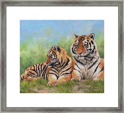 Tigers Framed Print by David Stribbling