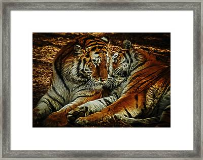 Tigers Digital Art Framed Print
