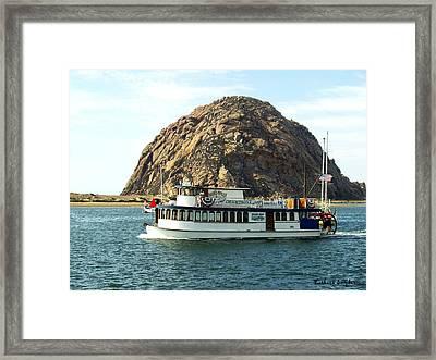 Tigers Folly Morro Bay Framed Print
