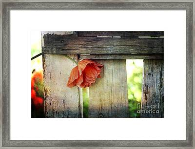 Tight Spot Framed Print