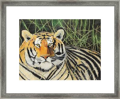 Framed Print featuring the painting Tigress by Jeanne Fischer