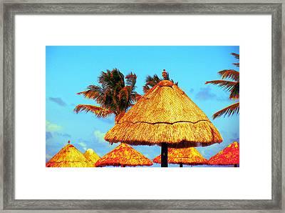 Tiki Huts Framed Print