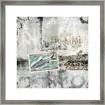 Tilapia Air Mail Framed Print by Carol Leigh