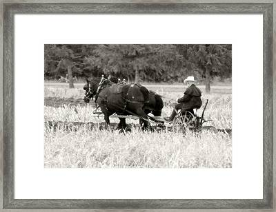 Tiling The Fields Framed Print by Michael Allen