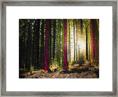 Till The Wood Framed Print by Steven Boland