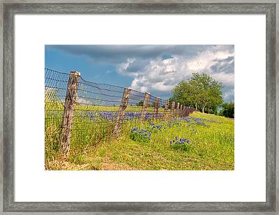Tilted Fence Framed Print