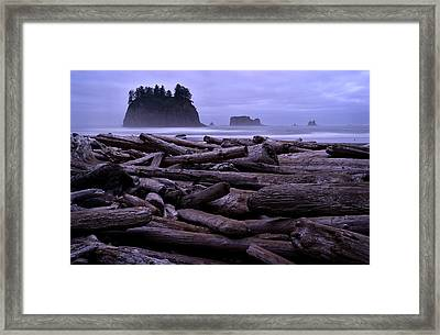 Timber Framed Print by Robert Charity