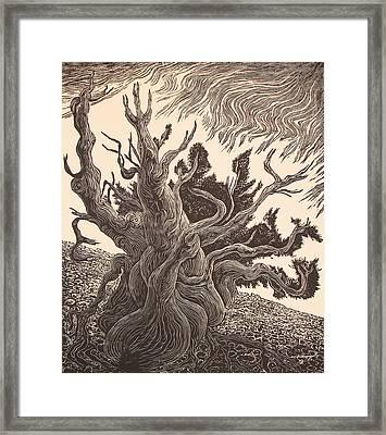Timberline Traveler Framed Print by Maria Arango Diener