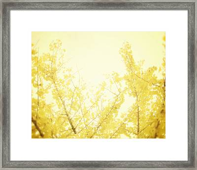 Time After Time Framed Print by Amy Tyler