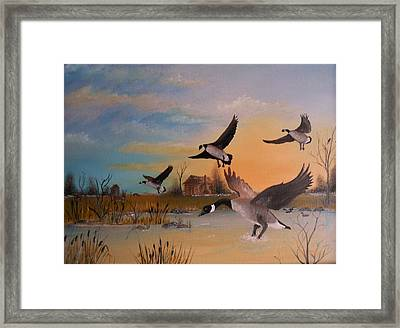 Time For A Rest Stop Framed Print by Al  Johannessen