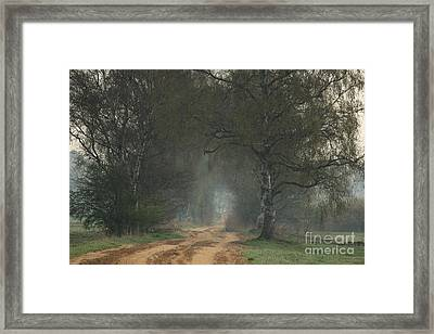Time For Good Shoes In The Nature Framed Print