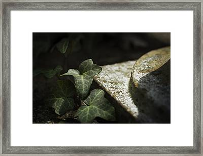 Framed Print featuring the photograph Time Is The Substance by Rebecca Sherman