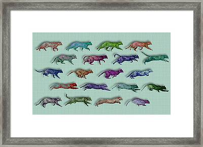 Time Lapse Motion Study Cat Green Background  Framed Print by Tony Rubino