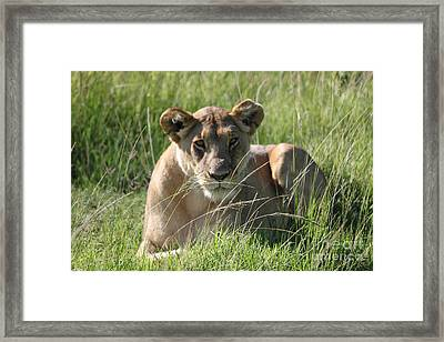 Time Out All Profits Go To Hospice Of The Calumet Area Framed Print