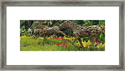 Time To Run Framed Print by Clare Bevan