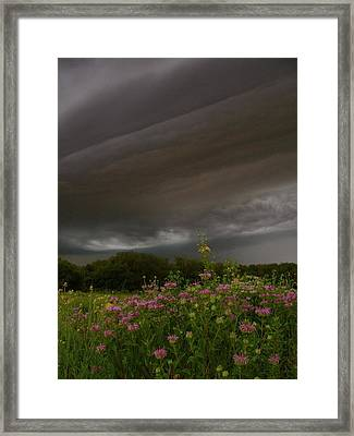 Time To Run Framed Print by Tim Good