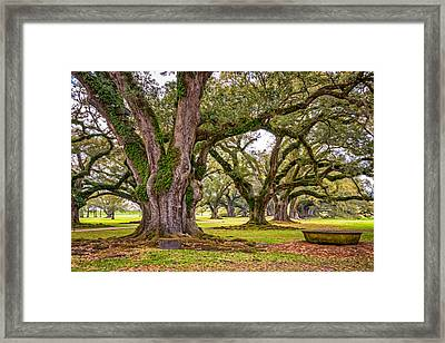 Time Travel Oil Framed Print