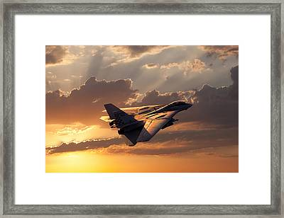 Timeless Beauty Tomcat Framed Print by Peter Chilelli