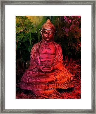 Timeless Buddha Framed Print