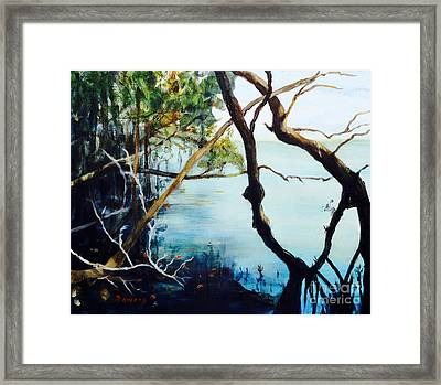 Timeless Forest Framed Print by Mary Lynne Powers