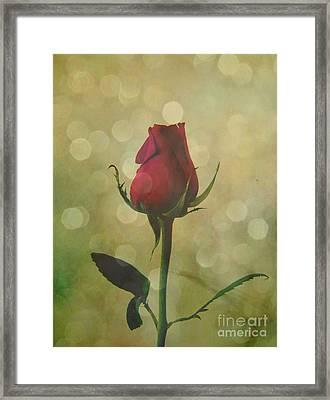 Timeless Love Shared Framed Print by Adri Turner