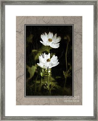 Framed Print featuring the photograph Timeless Two by Darla Wood