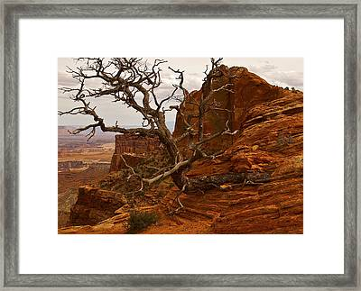 Times Up Framed Print by Randolph Fritz