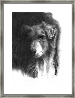 Framed Print featuring the drawing Timmy by Paul Davenport