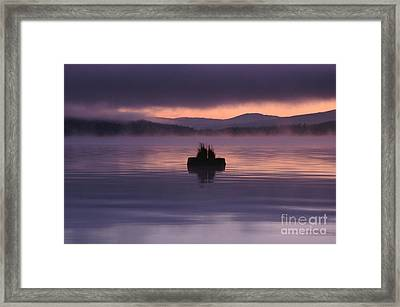 Timothy Lake Serenity Framed Print