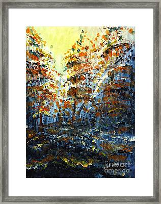 Tim's Autumn Trees Framed Print