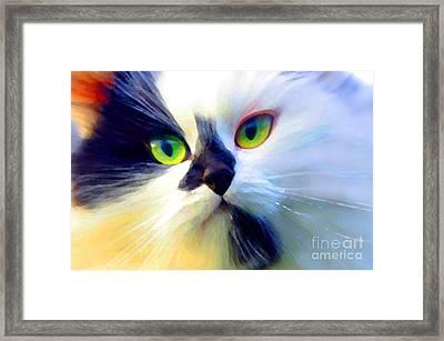 Tinker Framed Print