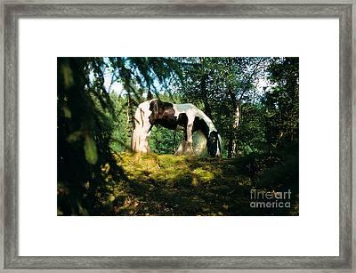 Tinker Horse Framed Print by Gabriele Boiselle