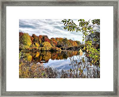 Tinkers Creek Framed Print by Monnie Ryan