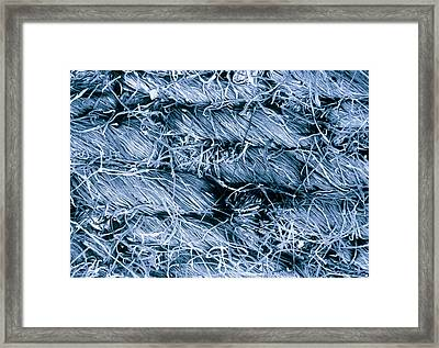 Tinted Sem Of Denim Jean Material Framed Print by Science Photo Library