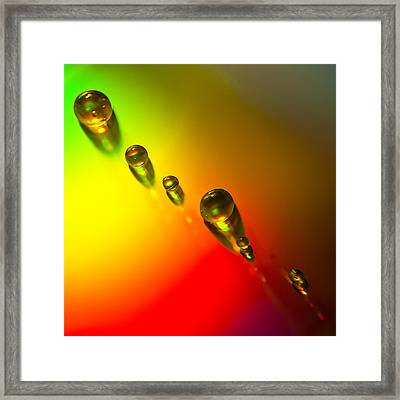 Tiny Bubbles Framed Print