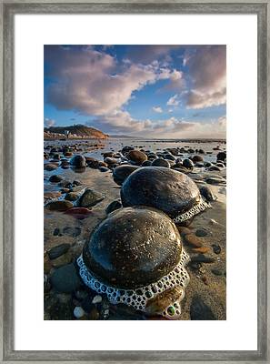 Tiny Giants Framed Print by Peter Tellone