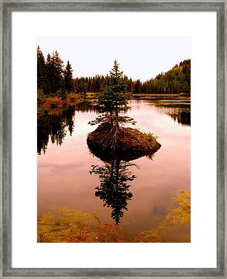 Tiny Island Framed Print