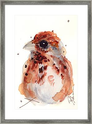 Tiny Sparrow Framed Print by Dawn Derman