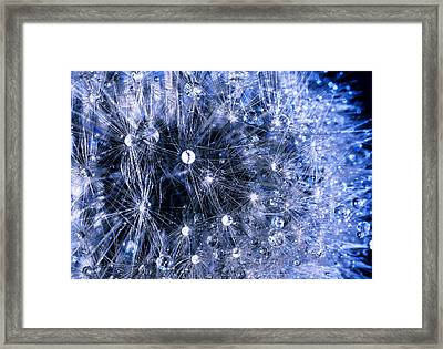 Tiny Worlds Framed Print by Russell Brown