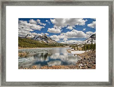 Tioga Lake Framed Print by Cat Connor