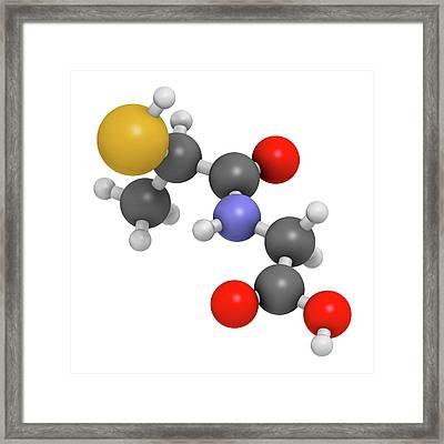 Tiopronin Cystinuria Drug Molecule Framed Print by Molekuul