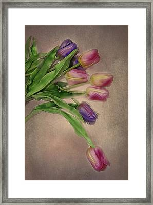 Tip Toe Thru The Tulips Framed Print by Mary Timman