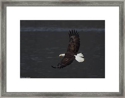 Tips  Framed Print by Glenn Lawrence