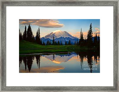 Tipsoo Magic Framed Print by Inge Johnsson