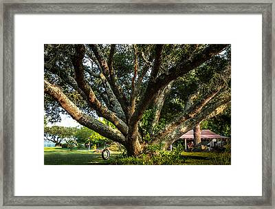 Tire Swing Framed Print by Karen Wiles
